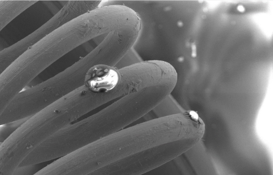 SEM-filament-coil.jpg